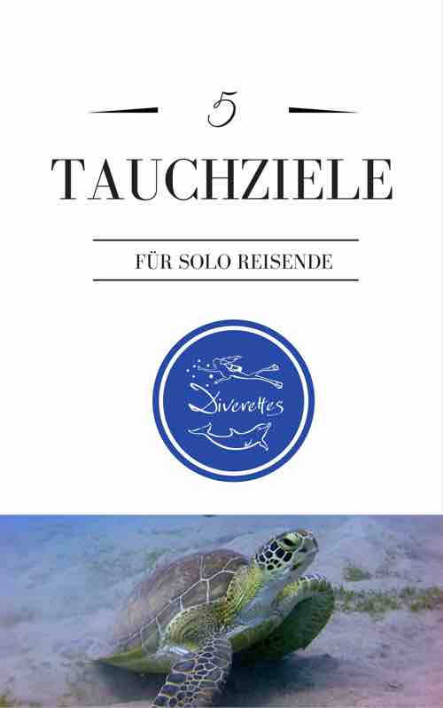eBook 5 Tauchziele Cover