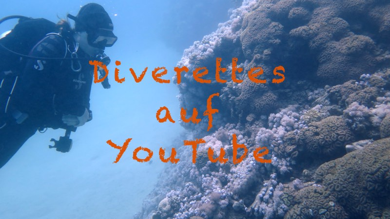 YouTube Kanal mit Videos rund ums Tauchen via www.diverettes.de